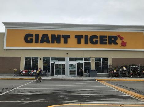 giant-tiger-254_3458211_Q01-001_S3Bzt